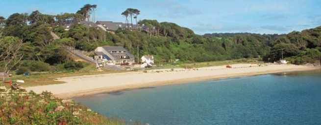 Image result for Maenporth Beach