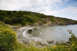 Image result for Polridmouth Cove Beach