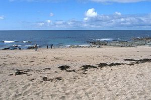 Image result for Porthleven Beach